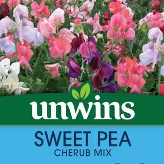 Sweet Pea Cherub Mix
