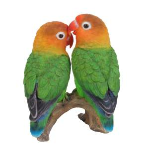 RL Love Birds D
