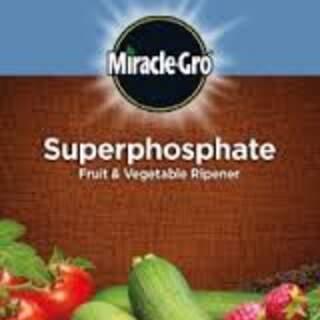 MG SUPERPHOSPHATE FRUIT & VEGETABLE RIPENER 1.5kg