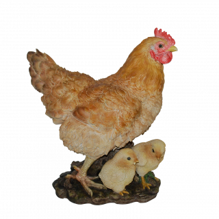 Real Life Hen with Chicks B x