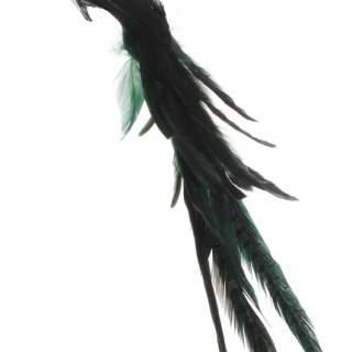 Feather bird black-green 55cm