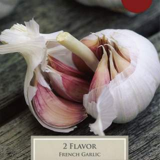 FRENCH GARLIC FLAVOR