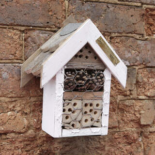 Small Bughouse