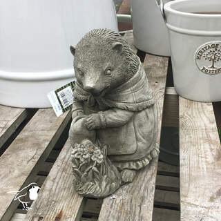 Hedgehog & Watering Can