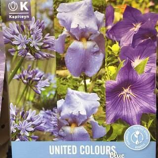 United Colours Blue