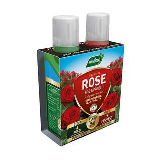 Westland 2n1 Feed and Protect Rose