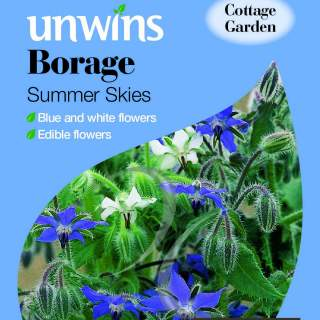 Borage Summer Skies