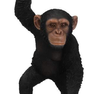 RL Hanging Chimpanzee B x 1