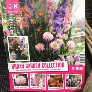 Urban Garden Collection