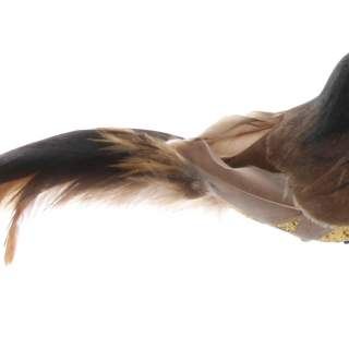 Bird with clip gold glitter brown feather 17cm