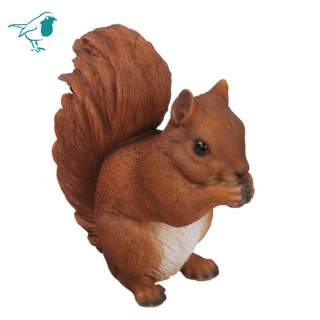 Red Squirrel Sitting B