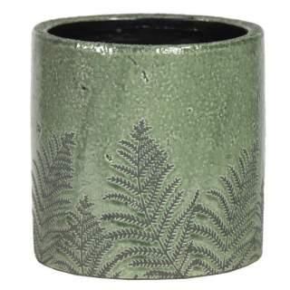 Shine Fern Cylinder Green D14.5H13