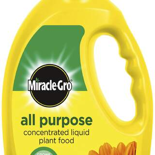MIRACLE-GRO ALL PURP CONCENTRATED PF LIQUID 1ltr