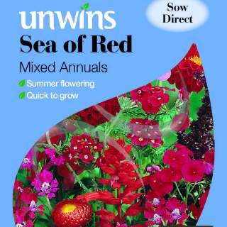 Unwins Sea of Red Mixed Annuals