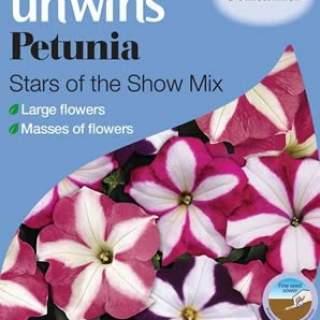 Petunia Stars of the Show Mix