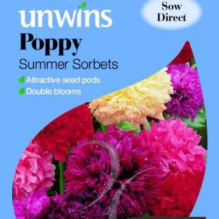 Poppy Summer Sorbets