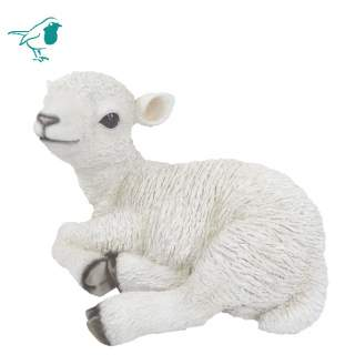 RL Sitting Lamb B