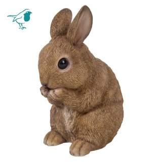 RL Sitting Baby Rabbit E