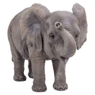 PP Baby Elephant F