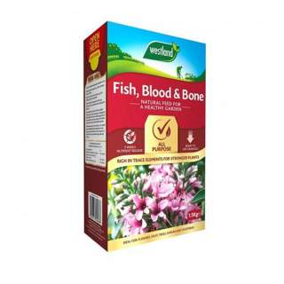 FISH, Blood & Bone