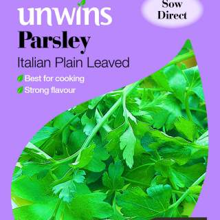 Herb Parsley Italian Plain Leaved