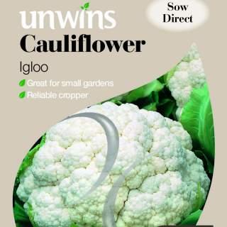 Cauliflower Igloo