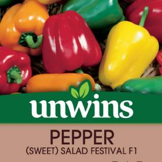 Pepper (Sweet) Salad Festival F1