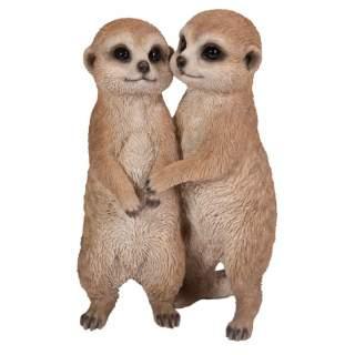 Hugging Meerkats B