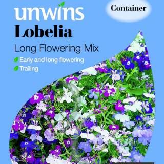 Lobelia Long Flowering Mixed