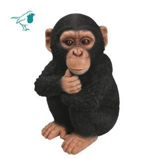 RL Baby Chimpanzee D