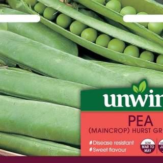 Pea (Maincrop) Hurst Greenshaft
