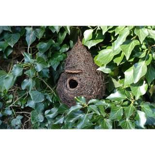 Giant Bird Nester/Roost Pocket
