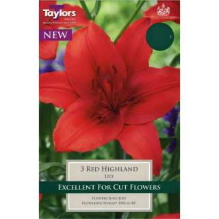 Lily Red Highland
