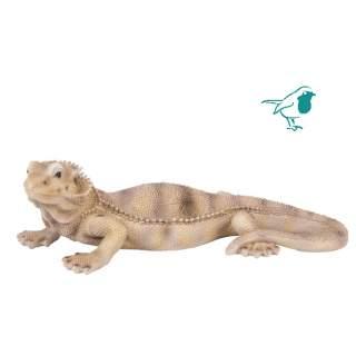 PP Bearded Dragon Lizard F