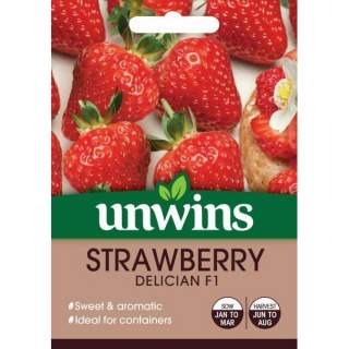 Strawberry Delician