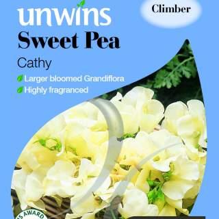 Sweet Pea Cathy