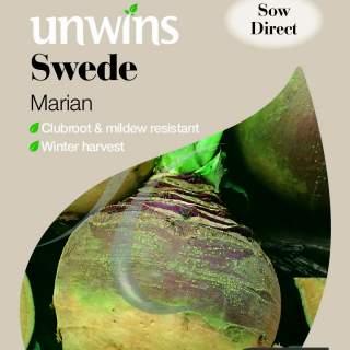 Swede Marian