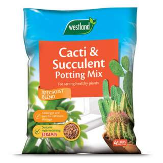 Cacti & Succulent Potting Mix (Enriched with Seramis) 4L