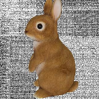 Baby Rabbit STANDING F